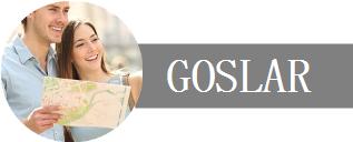 Deine Unternehmen, Dein Urlaub in Goslar Logo